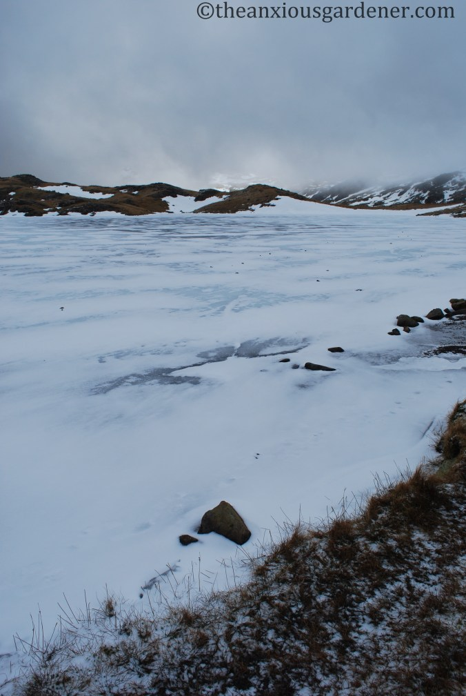 Lakeland Fells - February 2010