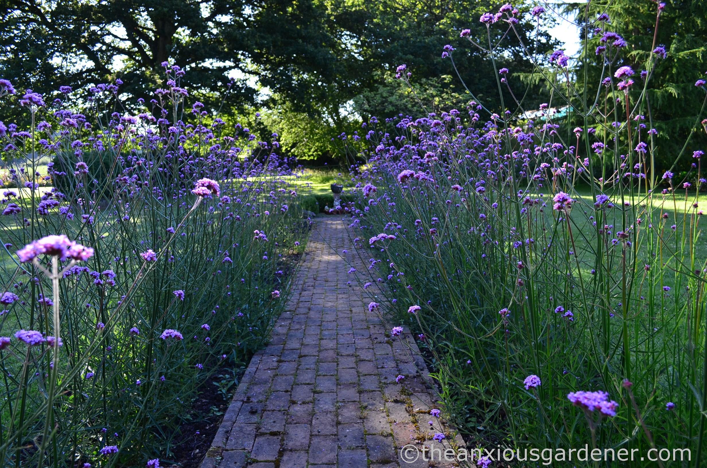 Back Garden Paving
