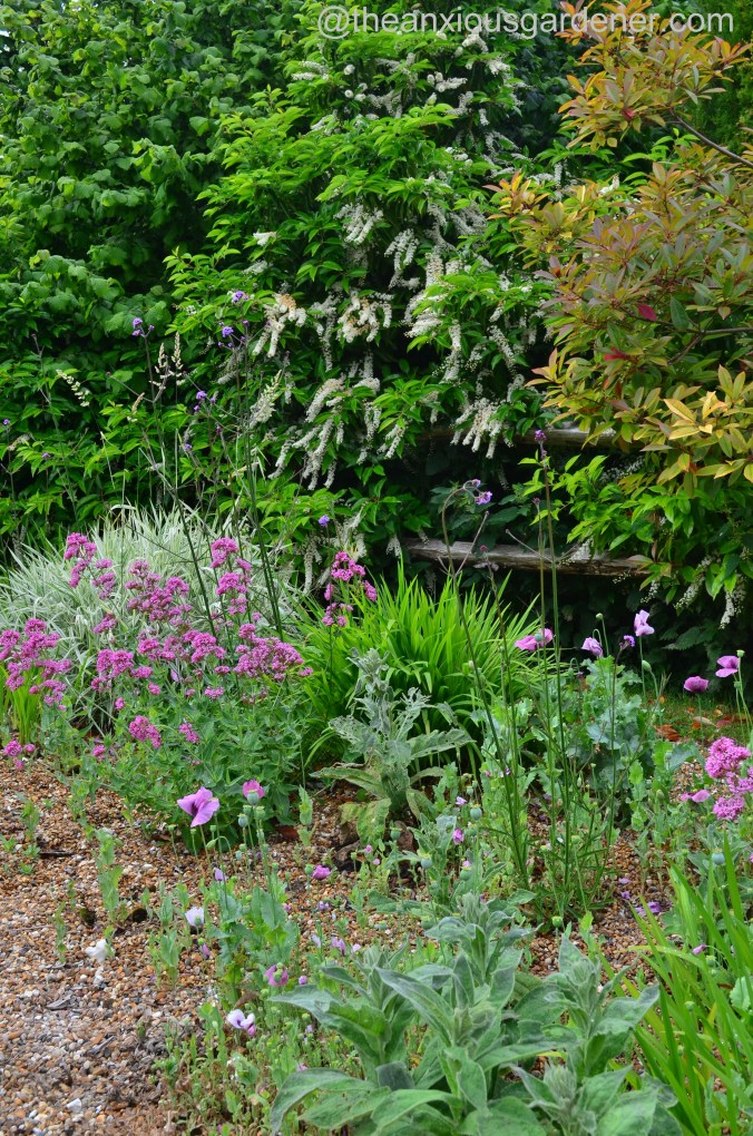 Gravel garden (1)