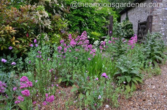 Gravel garden (9)