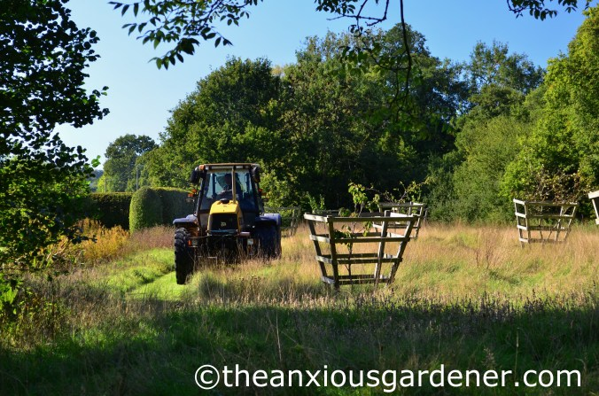 Meadow Cutting (5)