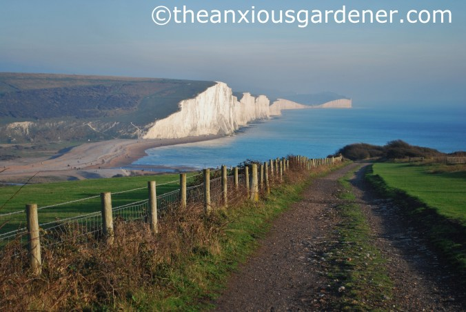 Seven Sisters (5)