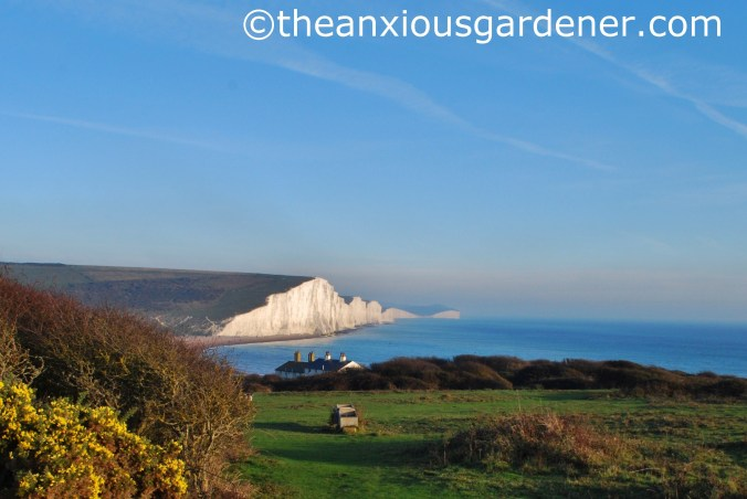 Seven Sisters (7)