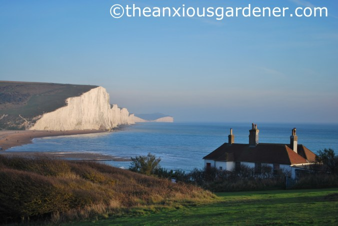 Seven Sisters (8)