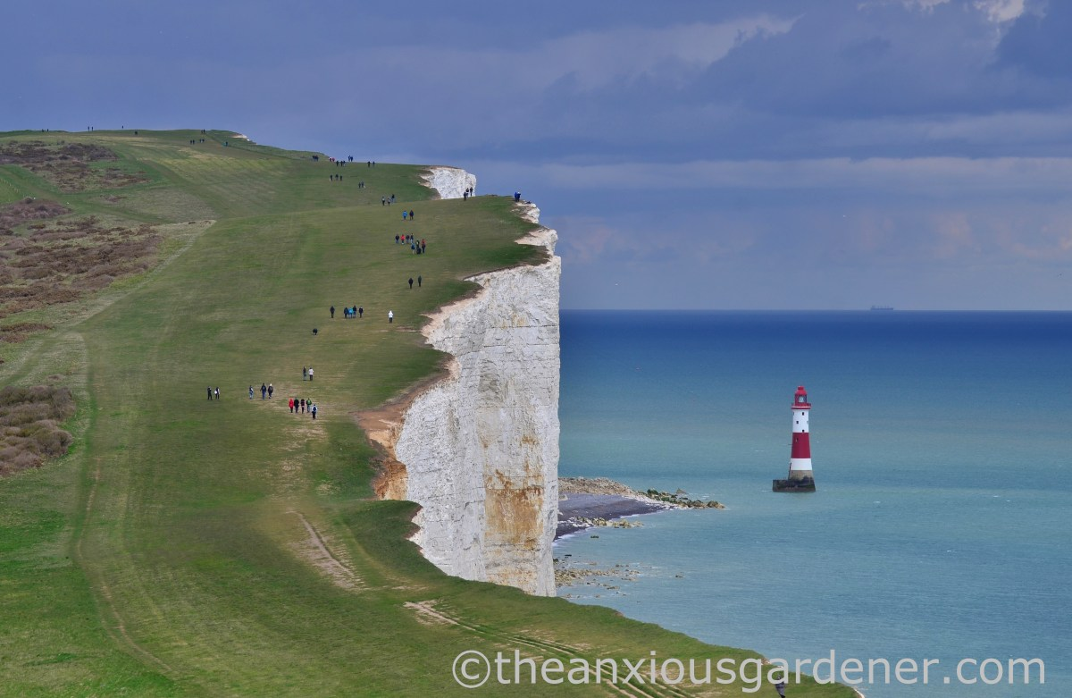 The South Downs Way: Winchester to Eastbourne