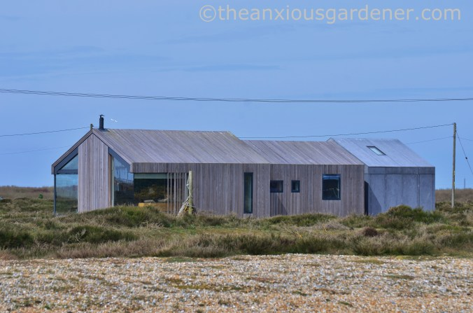 Dungeness (20)
