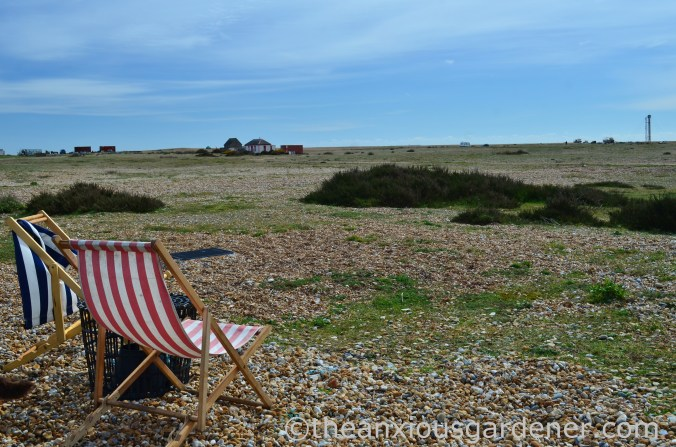 Dungeness (24)