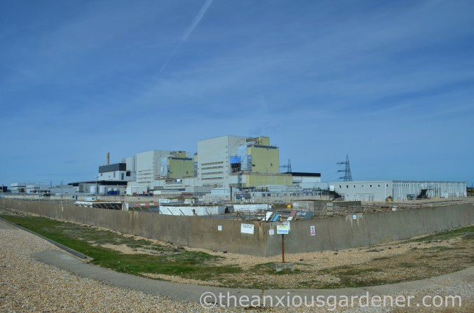 Dungeness Nuclear Power Station (1)