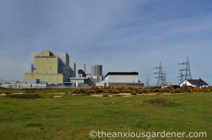 Dungeness Nuclear Power Station (2)
