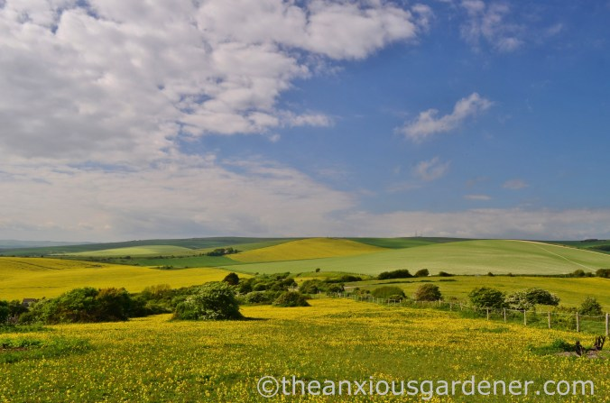 May South Downs