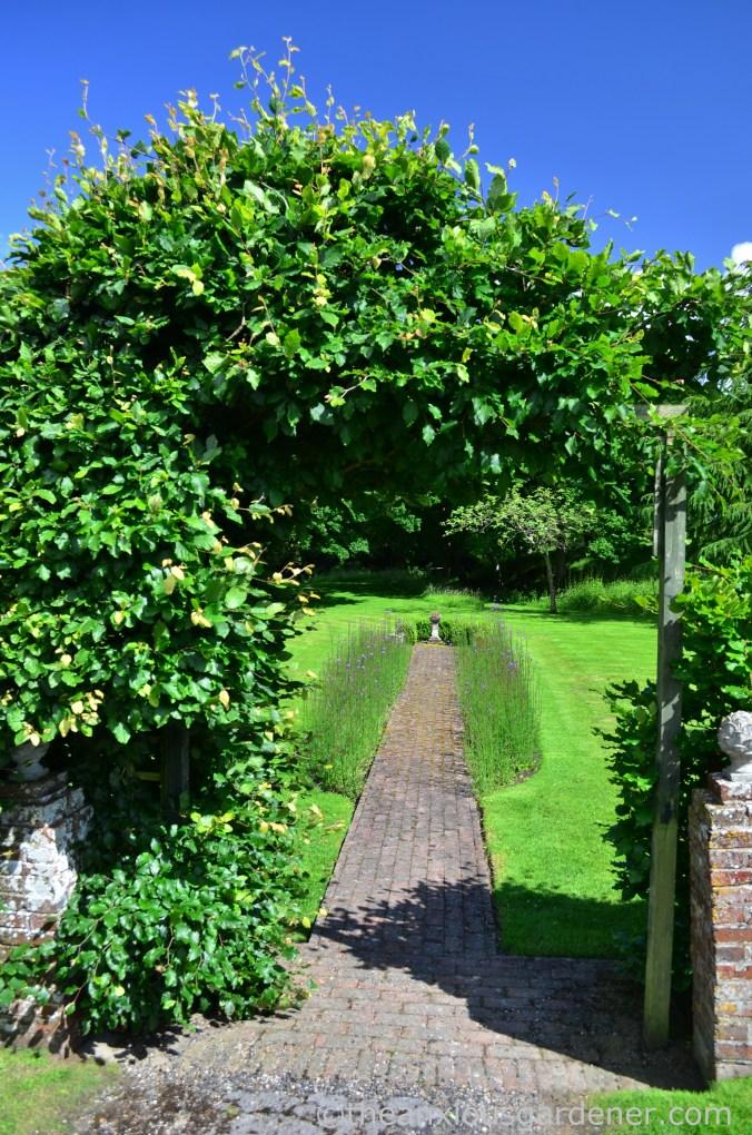 Beech Arch