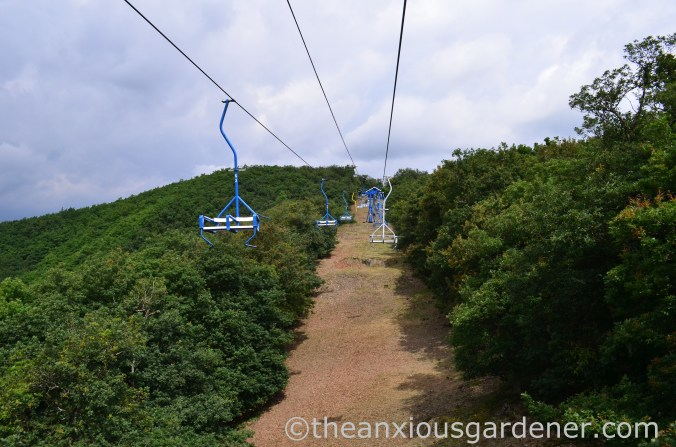 Boppard chairlift (2)