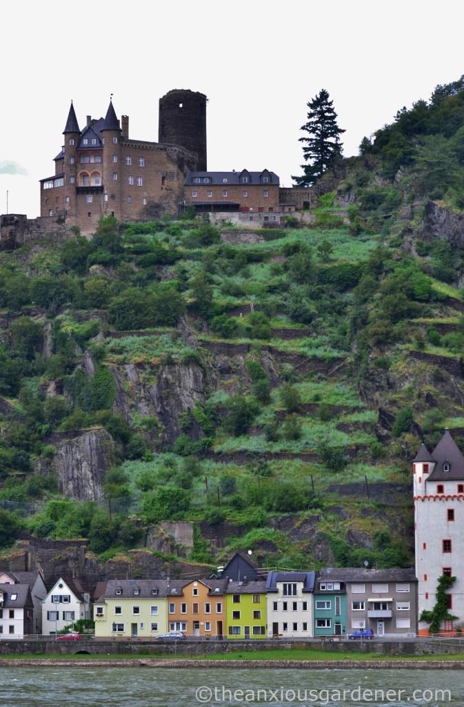 Cycling along the Rhine (10)
