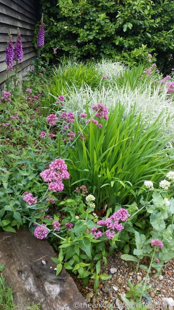Gravel Garden (3)