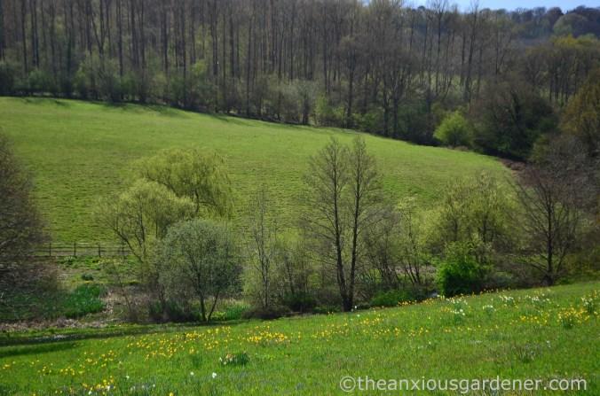 gravetye-manor-meadow-2
