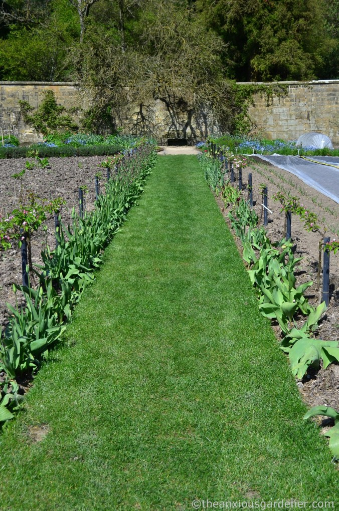 gravetye-manor-vegetable-garden-2