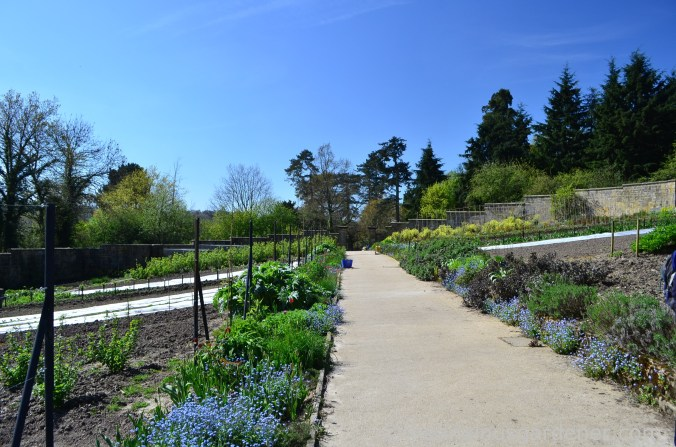 gravetye-manor-vegetable-garden-3