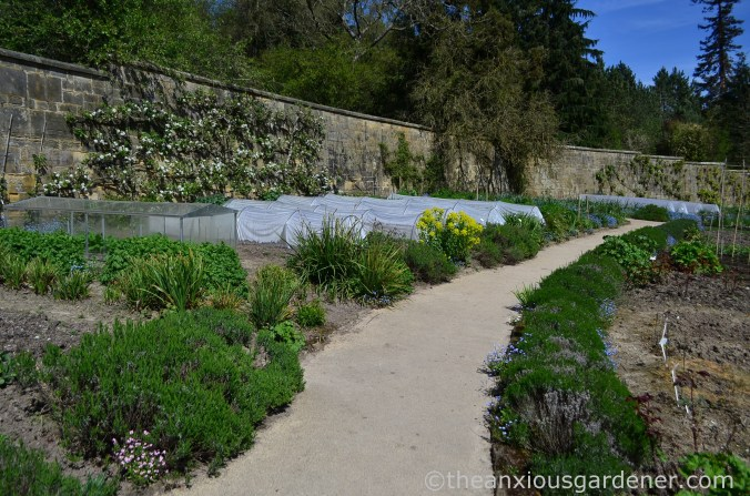 gravetye-manor-vegetable-garden-4