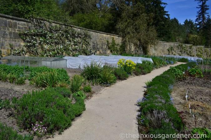 gravetye-manor-vegetable-garden-4
