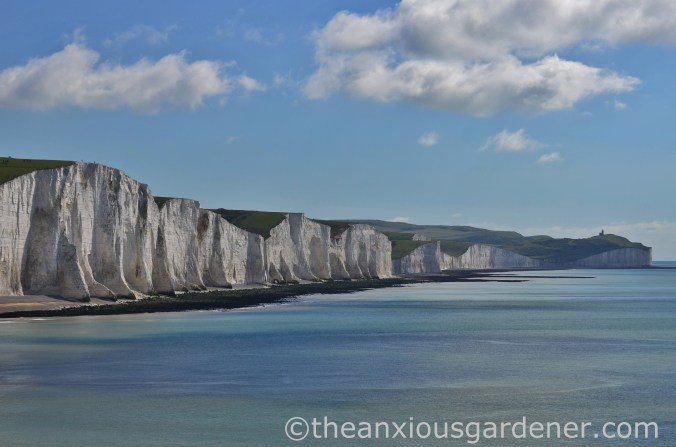Seven Sisters (2)