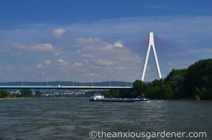 Cyclig along the Rhine (6)