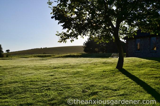 September Lawn
