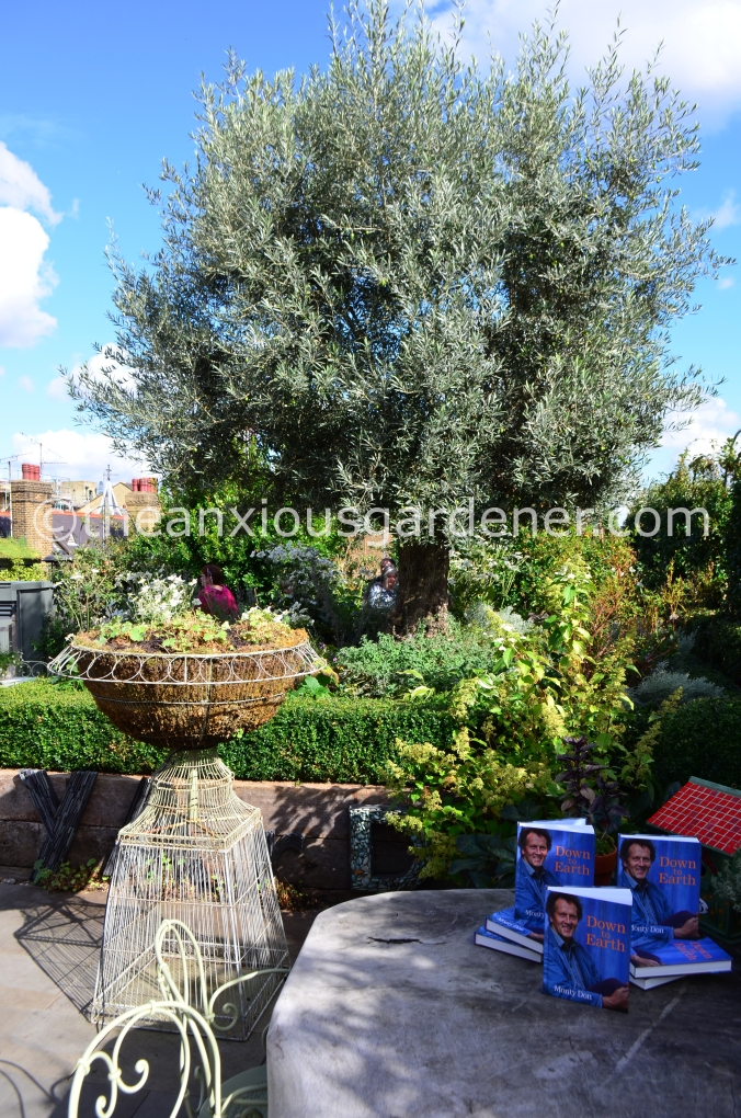 Ham Yard Roof Garden (4)