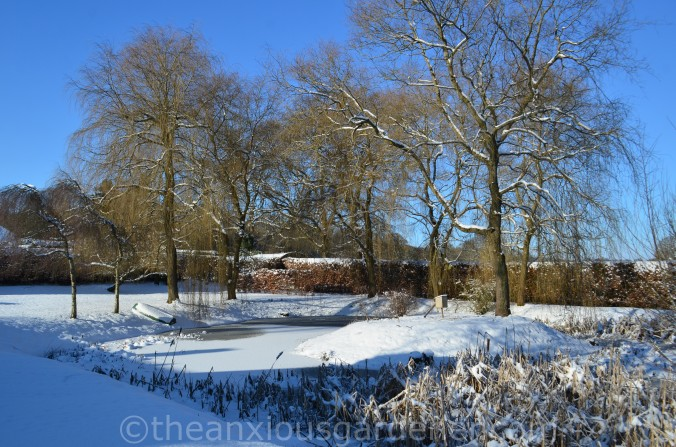 Snow over the Priory (13)