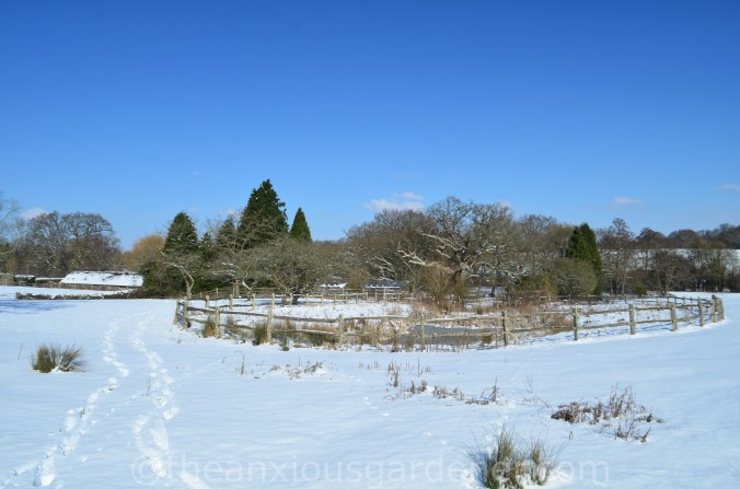 Snow over the Priory (17)