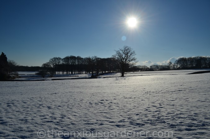 Snow over the Priory (5)