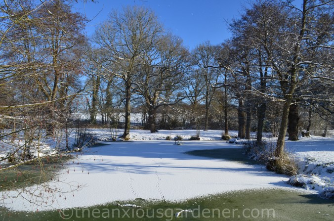 Snow over the Priory (6)