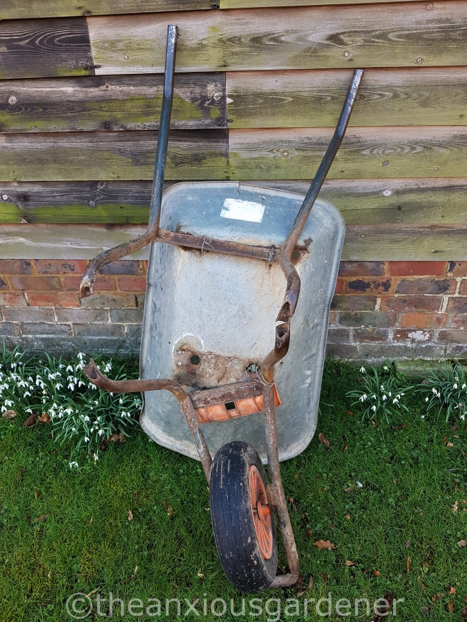 The Old Wheelbarrow (1)