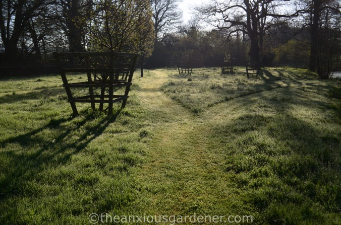 Meadow mown paths