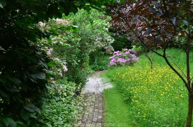 Greehouse path