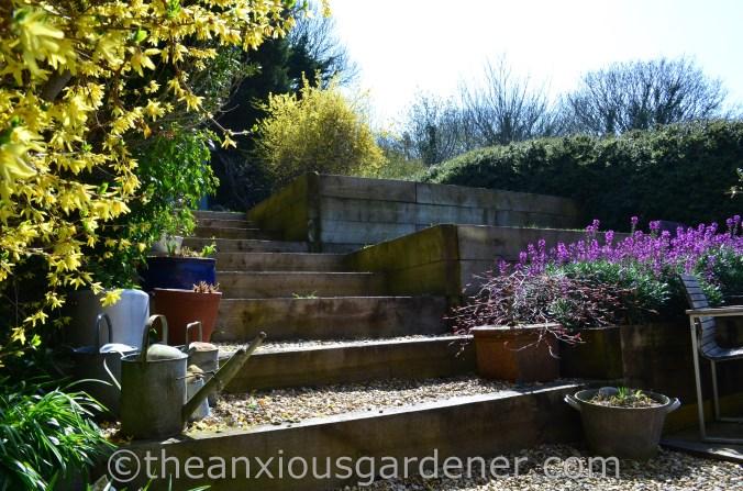 New House New Garden (30)