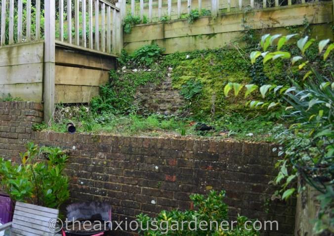 New House New Garden (37)