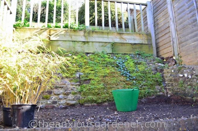 New House New Garden (50)